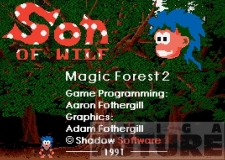Magic Forest 2