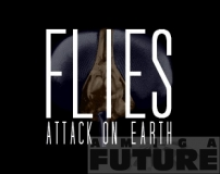 Flies: Attack On Earth